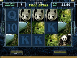 Untamed Giant Panda Free Spins