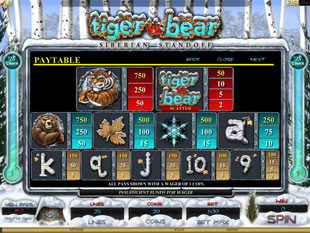 Tiger vs. Bear Slots Payout