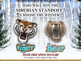 Tiger vs. Bear Free Spins