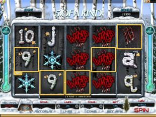 Tiger vs. Bear Slot Machine 5 of a Kind