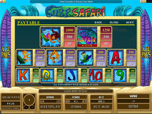Surf Safari Slots Payout
