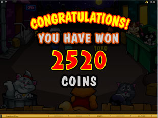 Alley Cats Bonus Game Win
